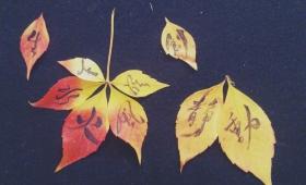 秋の落ち葉アート