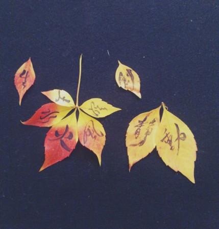 on leaf 3