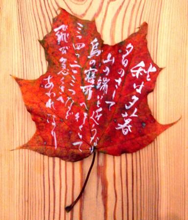 on the leaf 12