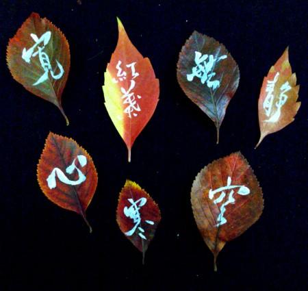 on the leaf 14