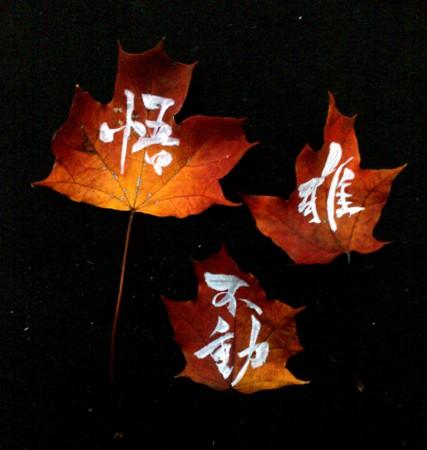on the leaf 7
