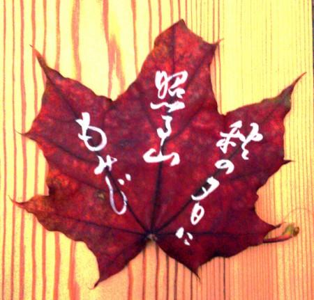 on the leaf 9